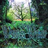 Wonder World de Oliva