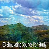 63 Simulating Sounds for Study by White Noise Research (1)