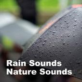 Rain Sounds & Nature Sounds by Rain Sounds (2)