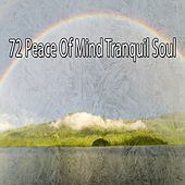 72 Peace of Mind Tranquil Soul von Massage Therapy Music