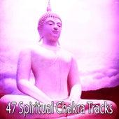 47 Spiritual Chakra Tracks by Japanese Relaxation and Meditation (1)