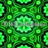 56 Still Life Meditation von Yoga