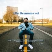 Ole Brumms Vei by Fela