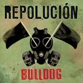 Repolución de Bulldog