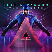 The Source (Extended Mixes) de Luis Alvarado
