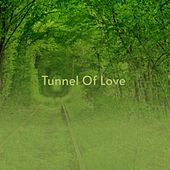 Tunnel of Love by Bernard Herrmann, Doris Day, Silvio Rodríguez, Bill Doggett, Alfred Newman, Max Steiner, Sammy Davis Jr., Freddie Hubbard, Johnny Green, Victor Young, Big Joe Turner, Maria Callas, Roy Rogers
