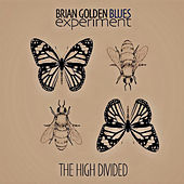 The High Divided by The Brian Golden Blues Experiment