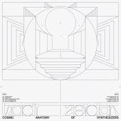 Cosmic Anatomy of Synthesizers de Hadi Zeidan