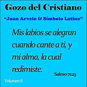 Gozo del Cristiano, Vol. II by Juan Arvelo