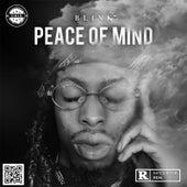 Peace of Mind de Blink™️