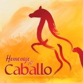Homenaje al Caballo by Antonio Aguilar, Imperio Argentina, Juan Pulido, Tito Guizar, Rodrigo Correa Palacios