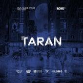 Taran by Peja