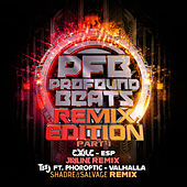 Remix Edition Part 1 by Various Artists