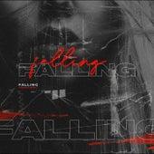 Falling (Remix) de EvoWolf