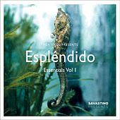 Espléndido Essentials, Vol. 1 by Various Artists