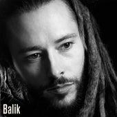 L'avenir / Timeline de Balik