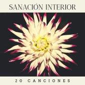 Sanación Interior 20 Canciones: Música para Sanar el Corazón y Curar el Alma de Musica de Relajación Academy