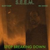Stop Breaking Down (feat. Elliott Sharp & Eric Mingus) by S.E.E.M.