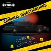 Criminal Investigations by Emanuel Kallins