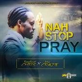 Nah Stop Pray de Radical Chris