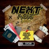 Next Move Riddim de Various Artists