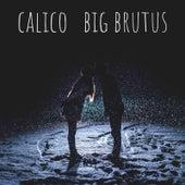 Calico di Big Brutus