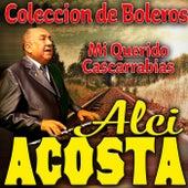Mi Querido Cascarrabias by Alci Acosta