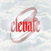 Elevate 3 de Various Artists