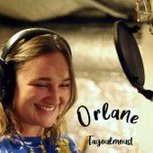Tagoulmoust de Orlane