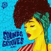 Sounds & Grooves, Vol. 2 de Various Artists