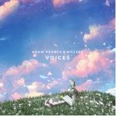 Voices de Adam Pearce