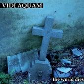 The World Dies by Vidi Aquam