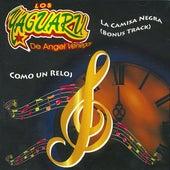 Como Un Reloj by Los Yaguaru