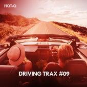 Driving Trax, Vol. 09 de Hot Q
