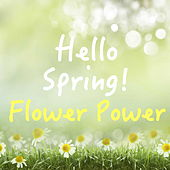Hello Spring! Flower Power von Various Artists