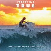 True (feat. Coldway, Kaktuz & Delaud) by Freaky DJ's