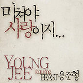 To Love Is To Be Crazy by Young Jee