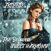 Sweet Armony (Tributo Beloved) di Disco Fever