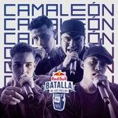 Camaleón von Red Bull Batalla de los Gallos