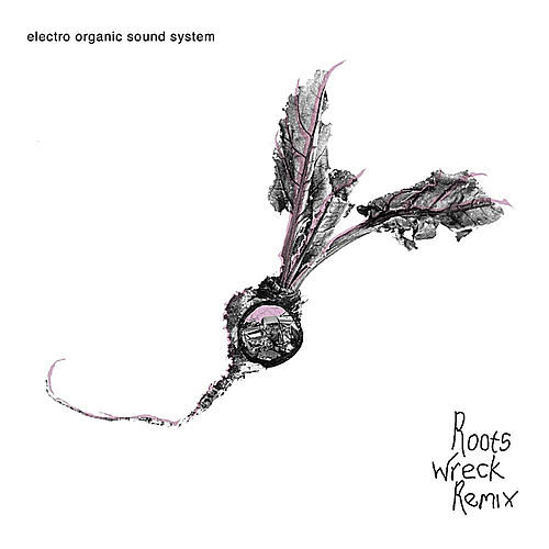 Roots Wreck Remix by Electro Organic Sound System (1)