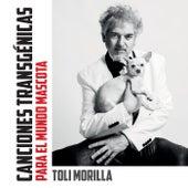 Canciones Transgénicas para el Mundo Mascota de Toli Morilla