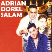 Regii Muzicii (Live) di Adrian Minune, Dorel de la Popesti, Florin Salam