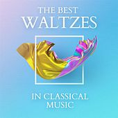 The Best Waltzes In Classical Music de Various Artists