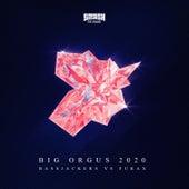 Big Orgus 2020 by Bassjackers