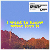 I Want To Know What Love Is (BLOND:ISH Sunrise Jungle Rework) by Foreigner