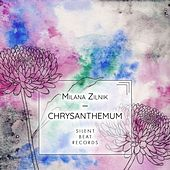 Chrysanthemum by Milana Zilnik