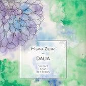 Dalia by Milana Zilnik