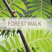 Forest Walk by Nature Sounds (1)