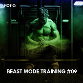 Beast Mode Training, Vol. 09 de Hot Q