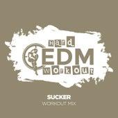 Sucker de Hard EDM Workout